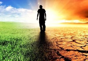 Tatlı Sularda Asitleşme Sorunu Nedir?