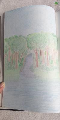 rzeka, drzewa, las, cień, Kaszuby