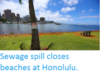 http://sciencythoughts.blogspot.co.uk/2016/08/sewage-spill-closes-beaches-at-honolulu.html