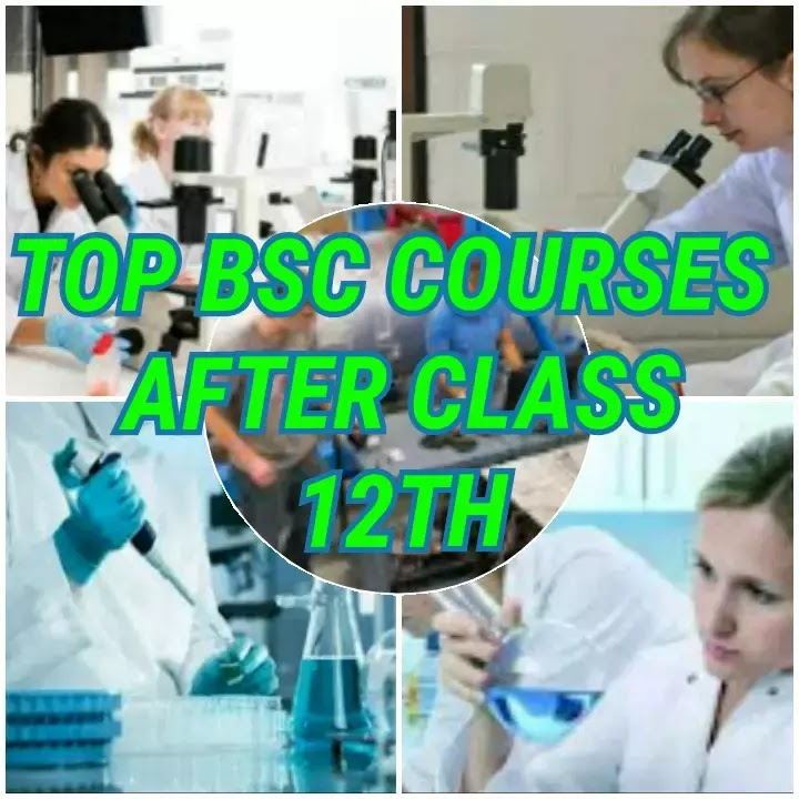 Top BSc. Courses After Class 12th