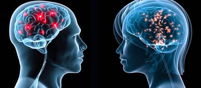 Ученые изобрели способ стирания ненужных воспоминаний в мозге человека