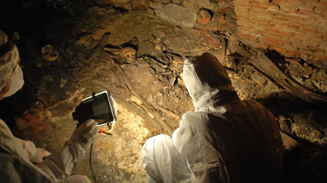 Early 17th century graves found under floor of Poland's Rzeszów basilica