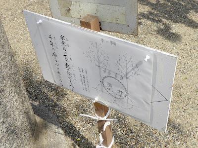 機物神社 茅の輪 作法