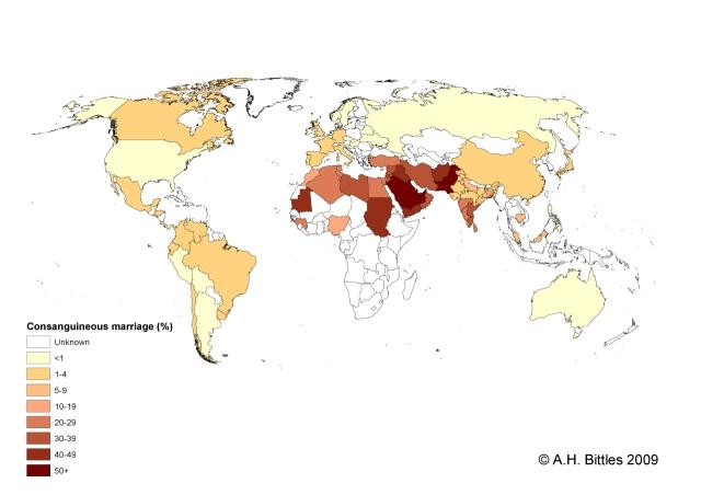 Muslimsk friskola saknar behoriga larare