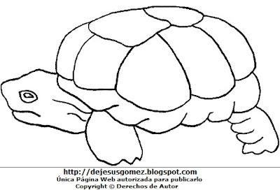 Imagen tortuga de perfil para colorear, pintar o imprimir, hecha para niños. Dibujo hecho por Jesus Gómez