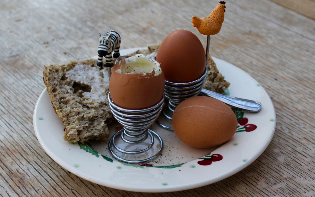 Boiled eggs are a good protein source