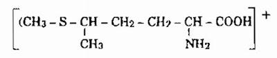 Thành phần hóa học Cải Bắp - Brassica oleracea - Nguyên liệu làm thuốc Chữa Đau Dạ Dày