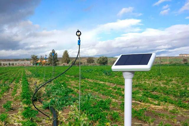 Manfaat IoT bersama Teknologi Blockchain di Bidang Pertanian-12