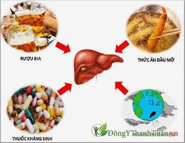 Những điều nên hạn chế để bảo vệ chức năng gan