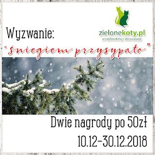 https://sklepzielonekoty.blogspot.com/2018/12/wyzwanie-sniegiem-przysypao.html