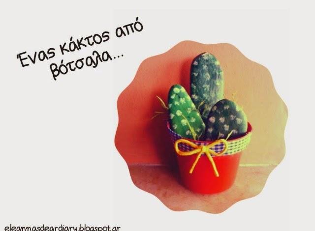 oopsblogara-kaktos-apo-votsala