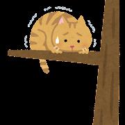 高いところから降りられない猫のイラスト