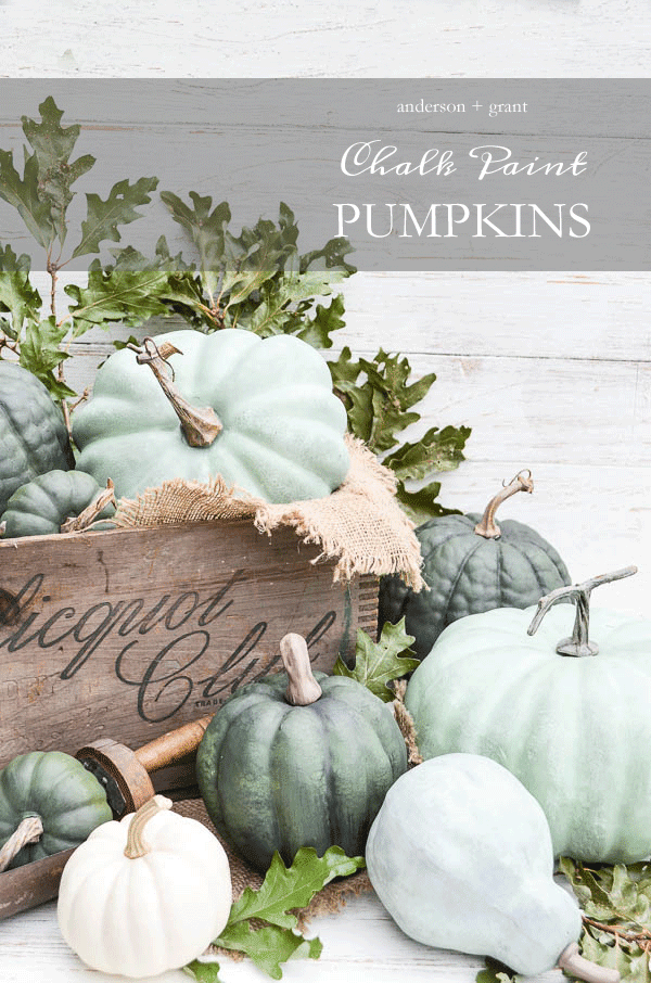 Looking for a project to transform some plastic craft store pumpkins?  Check out this tutorial for using a special chalk paint technique to create realistic pumpkins.  |  www.andersonandgrant.com