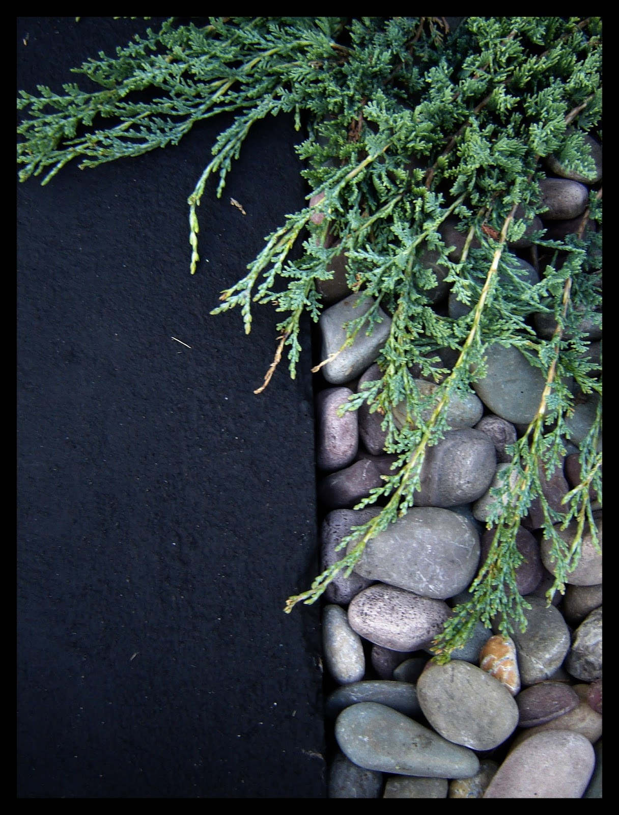 Asphalt Sealcoat - River Rock Juniper