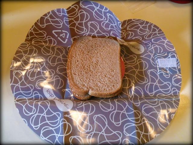 Reuseable Sandwich Wrap