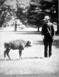 William Hornaday future director of the Bronx Zoo and an American Bison calf in 1886