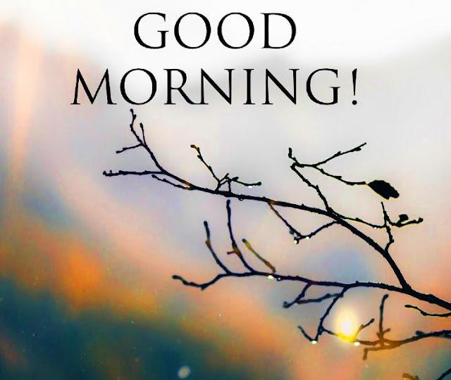 good-morning-whatsapp-wishes