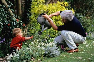 Домашнее воспитание без детского сада