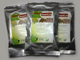 Jamu herbal obat kuat alami dari kisah kuda liar