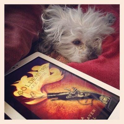 Murchie dozes beneath a red comforter folded over to make a blanket cave for him. Beside him is a white Kobo with Goldenfire's cover on its screen. Stylized golden flames emerge from a black snapping hen pistol with brass fixtures.