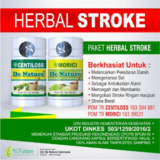 Obat Herbal Cina Paling Ampuh Stroke Patients Ringan Dan Parah