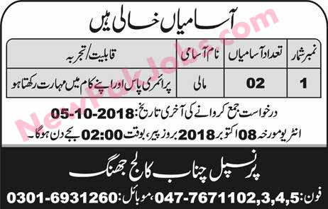 Primary-Pass-jobs-in-jhang