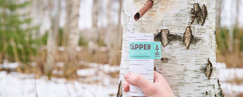 Tapped Trees, Latas de madera