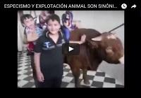 https://www.youtube.com/watch?v=pvYm__j1hEg
