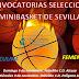 Última convocatoria de las Selecciones de Sevilla Minibasket