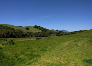 View to the north of a rocky peak and green hills, Morgan Territory Regional Preserve, Livermore, California