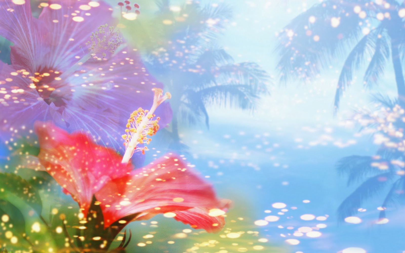 Beautiful Animated Wallpapers Beautiful Wallpapers