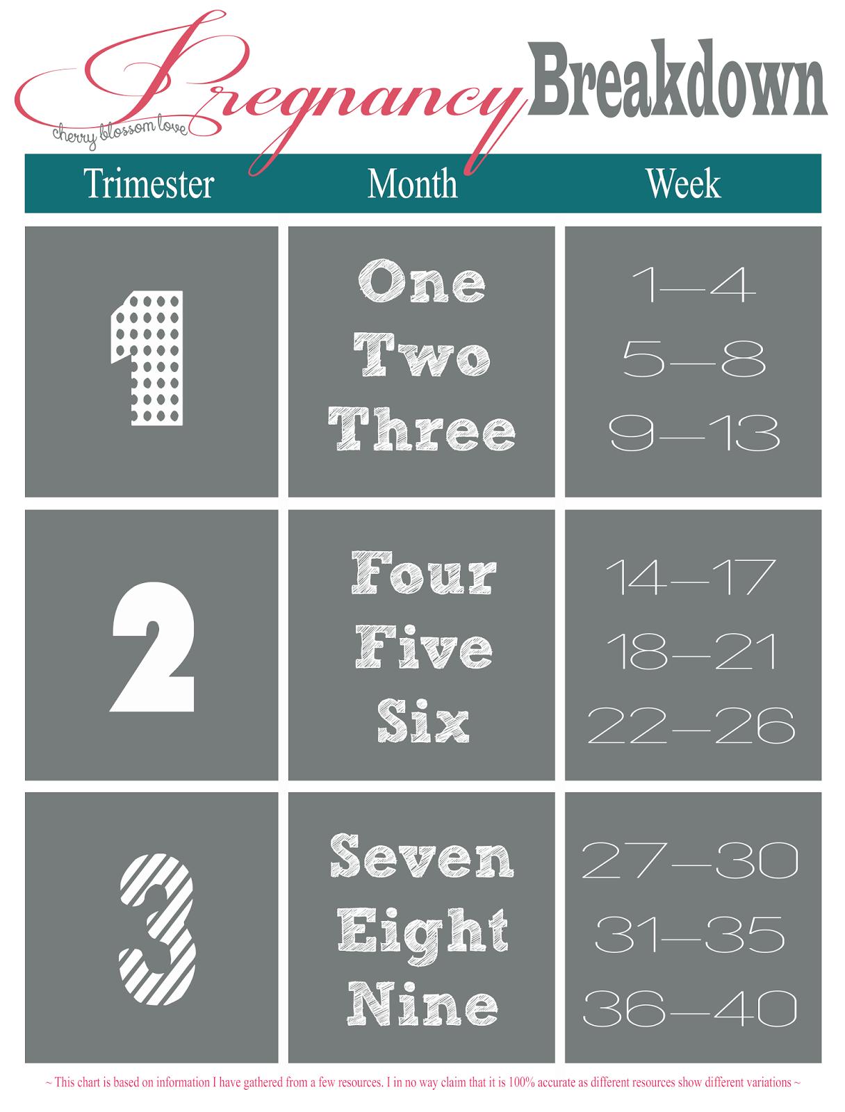 Week Month Trimester Chart