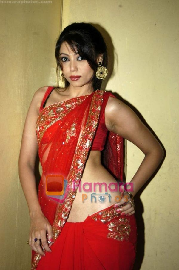 Cheer Up India Cury Indian Girl In Red Hot Saree-8715