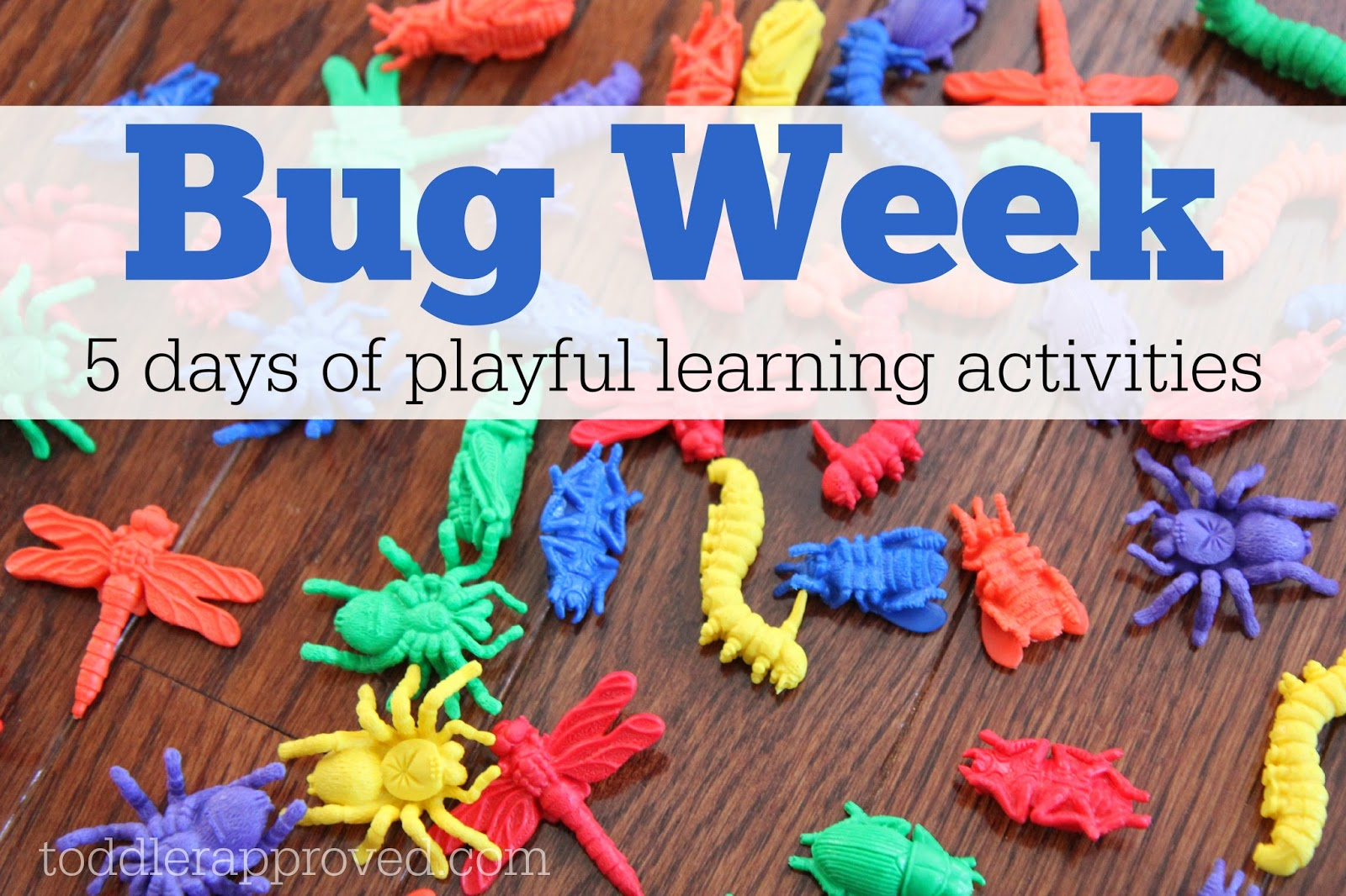 Toddler Approved Bug Week Playful Learning Activities