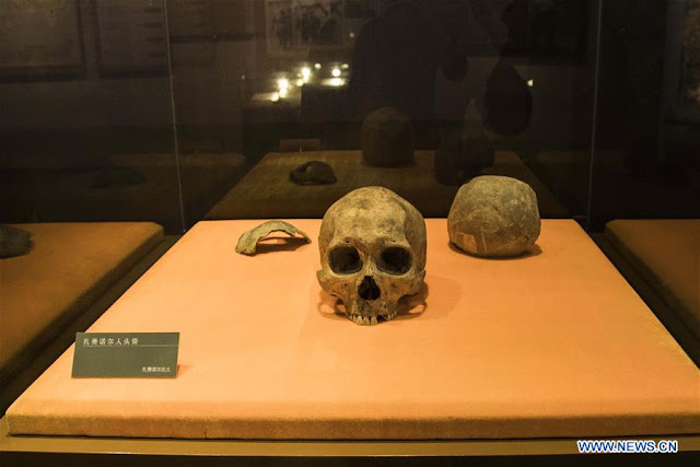 Human skull unearthed near north China border confirmed to be 10,000 years old