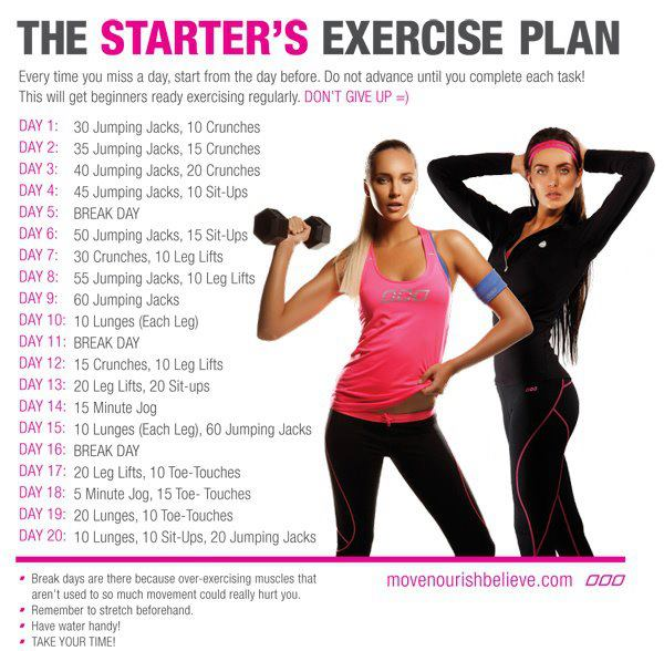 Exercise Workout Plan: Metro Wellness Council: Quick, Easy Workouts- No Equipment