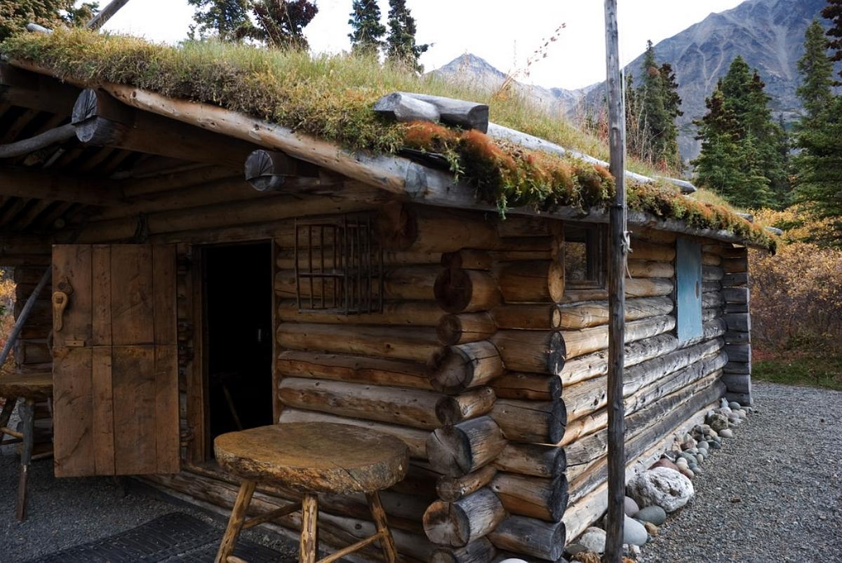 скоро фото домов людей живущих в дикой природе используется как верхняя