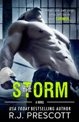 https://www.goodreads.com/book/show/33665297-the-storm