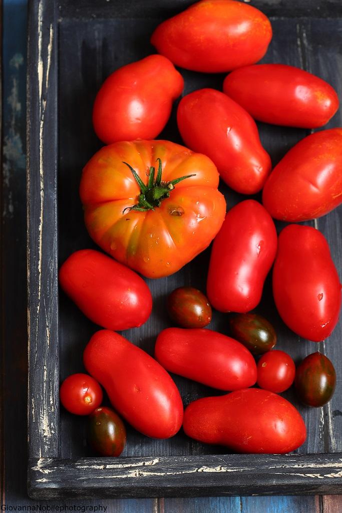Pomodori per preparare la frittata con melanzane e pomodori