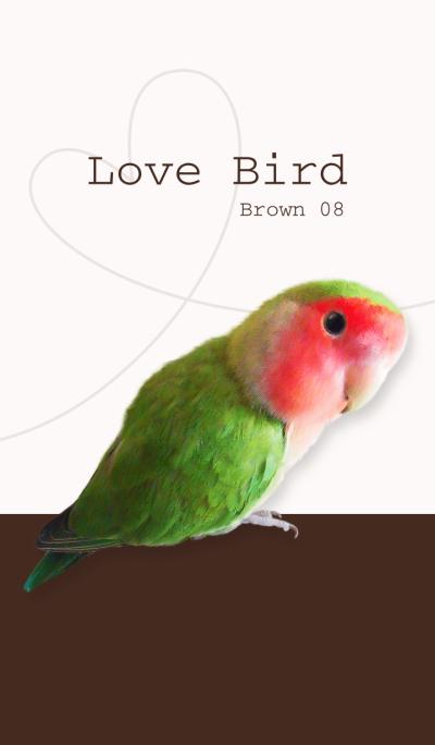 Lovebird/brown 08