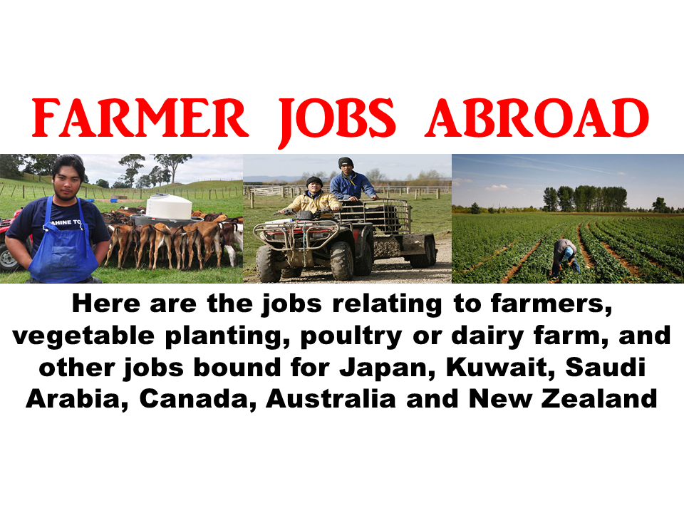 farmer dating new zealand World's largest dairy exporter the public for the first time in a history dating back some new zealand and so with new zealand farmers leading the.