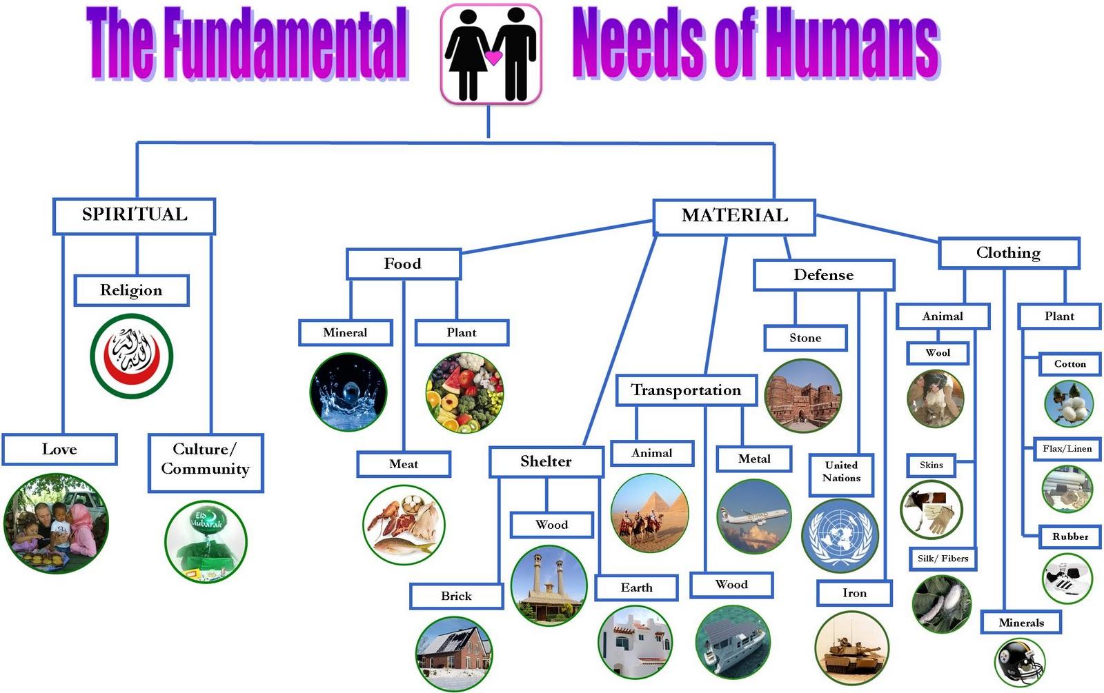 Noor Janan Homeschool Fundamental Needs Of Human