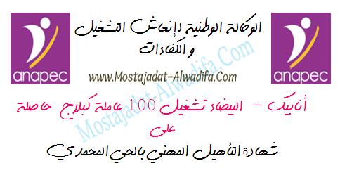 أنابيك - البيضاء تشغيل 100 عاملة كبلاج حاصلة على شهادة التأهيل المهني بالحي المحمدي