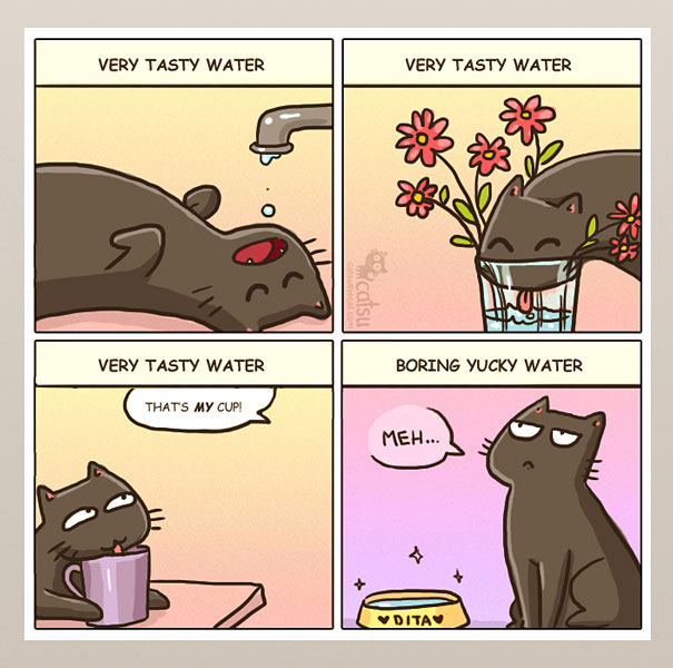 15+ Comics That Purrfectly Capture Life With Cats