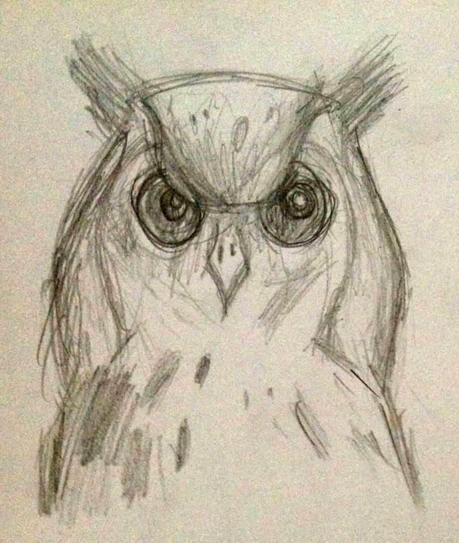 Owl Drawing Tumblr Wallpapers Simple