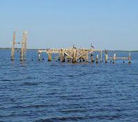 BP Recovery & Catfish Divan
