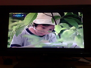 Hasil Gambar Televisi Kualitas Terbaik dengan Antena TV Bagus 1