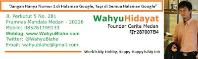 Wahyu Blahe Guru SEO Medan