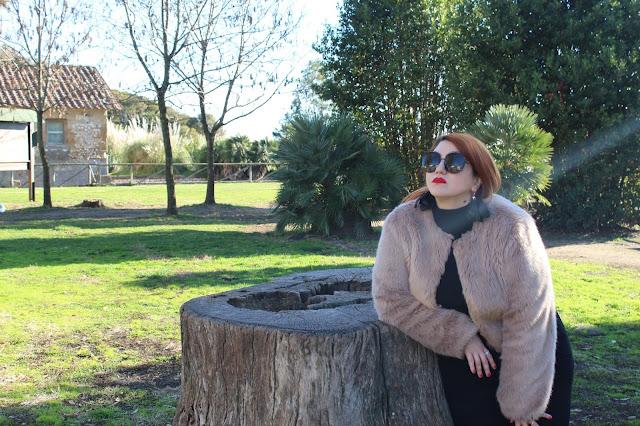 Cosa fare a Roma e nel Lazio in Inverno