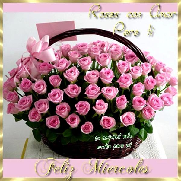 Rosas Feliz Miércoles
